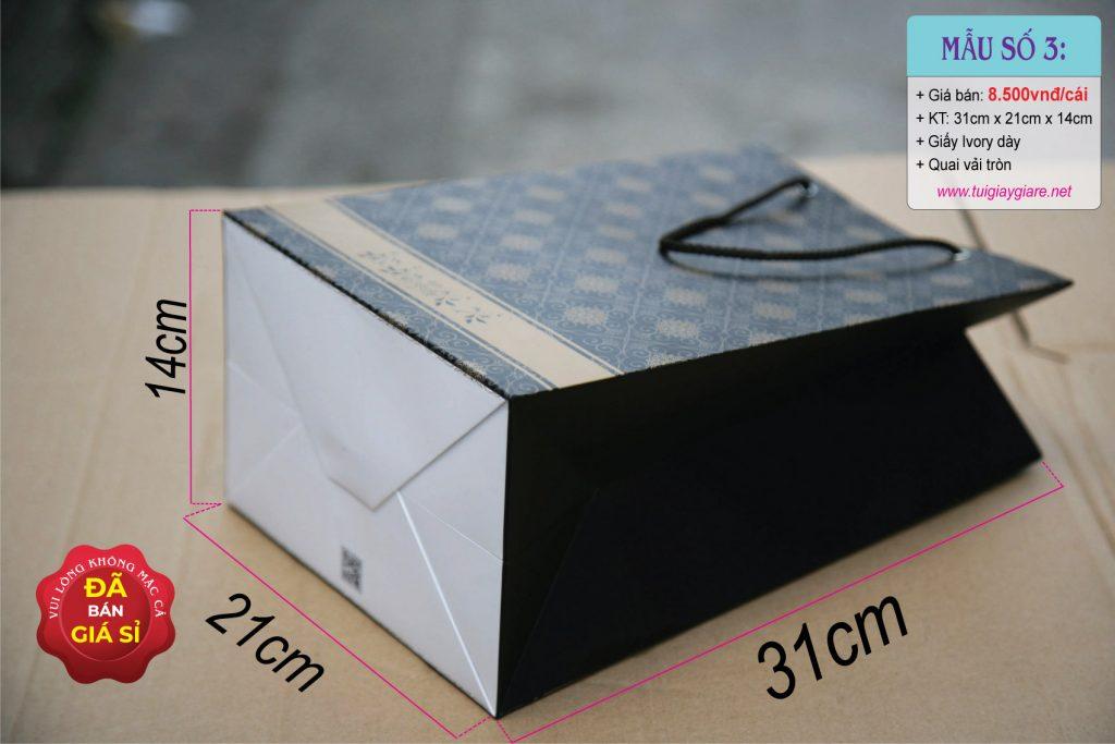 Túi giấy đứng size L