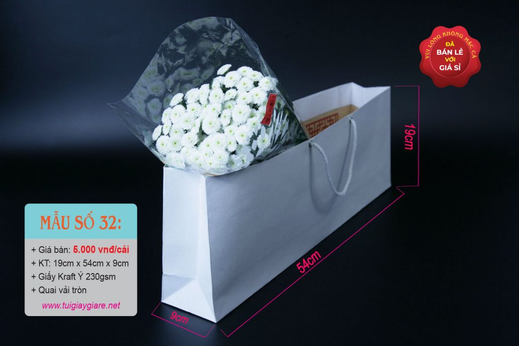 Túi giấy trơn
