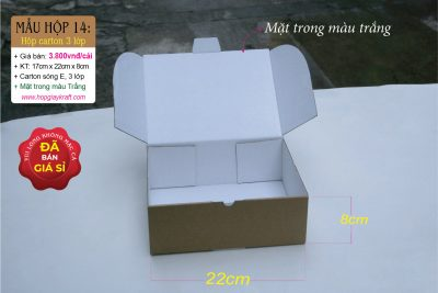 Hộp carton 3 lớp trắng